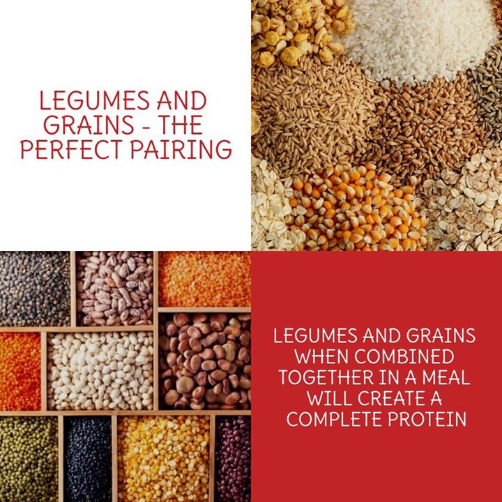 You can combine grains and legumes to make high-quality proteins.  The best way to complete amino acid profile for vegans  #protein #vegan #vegetarian #vegetarianprotein #legumes #grains #aminoacid