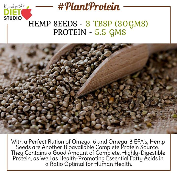 If you're following a vegetarian diet, try these meatless and plant-based options to get your protein. #protein #vegan #vegetarian #veganprotein #vegandiet #vegetariandiet #plantbased #sources #amaranth