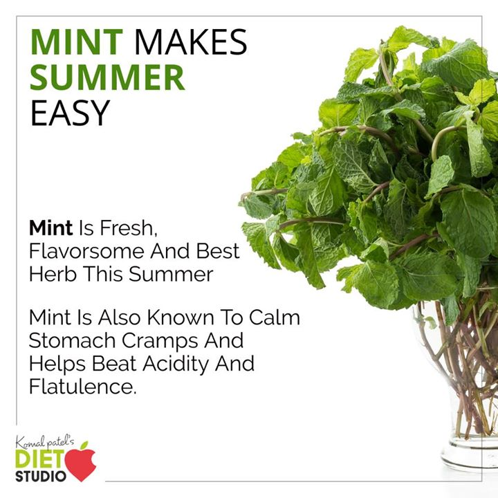 Mint makes summer easy  Mint can be used in your infused water or in your buttermilk for its best use.  #mint #mintleaves #summer #summertips