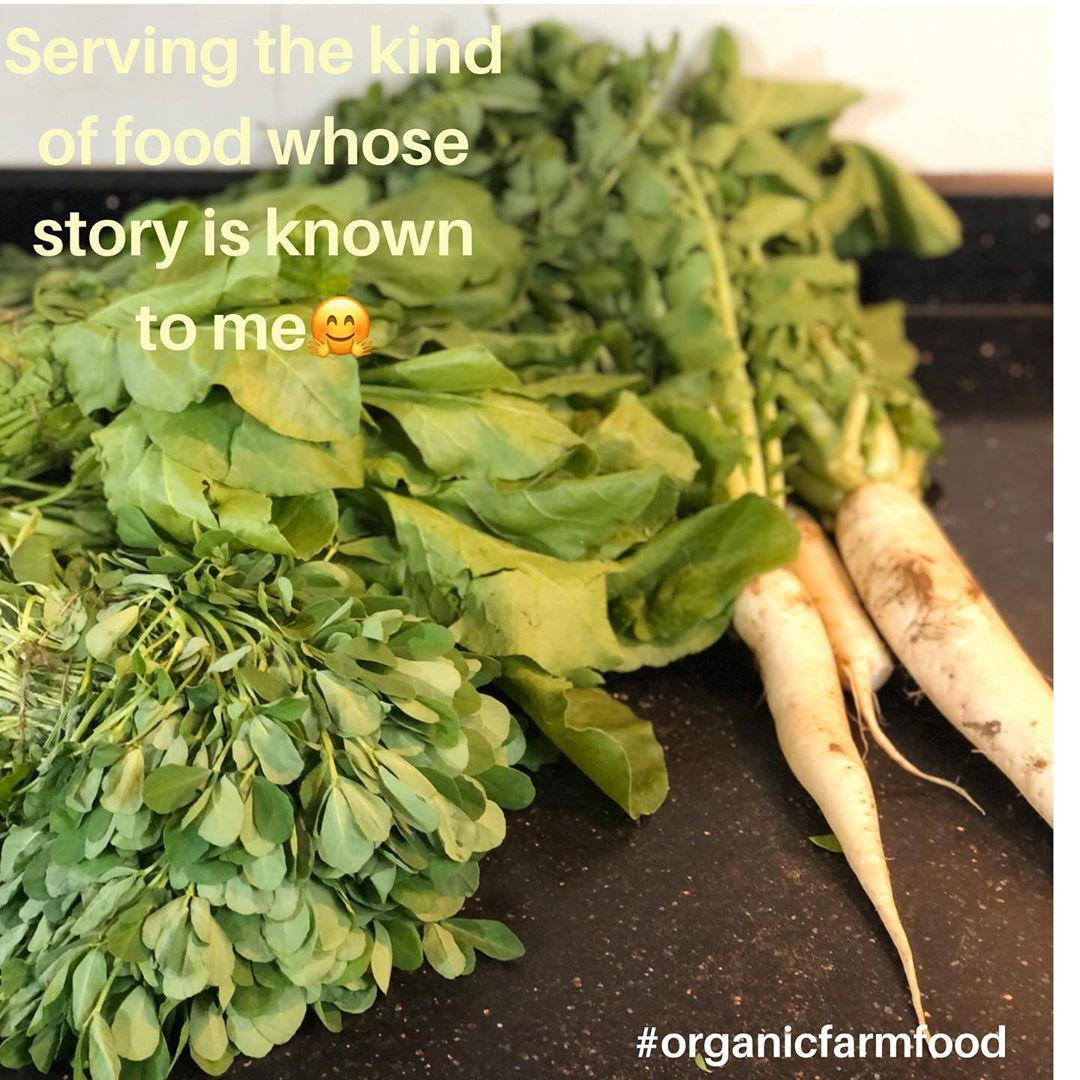 """""""To everything there is a season and a time to every purpose under the heaven...a time to plant and a time to pluck up that, which is been planted."""" #organic#farmfood#healthy#seasonalvegetables"""